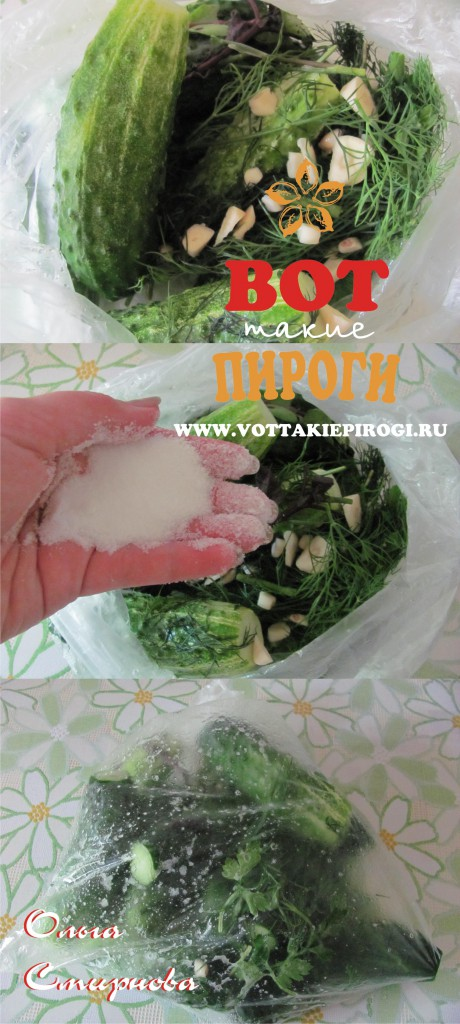 Как быстро приготовить малосольные огурцы